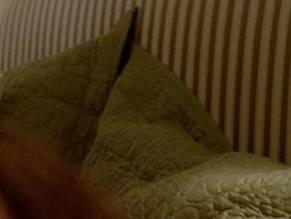 Jamie lynn sigler nude scene properties turns